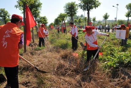 武汉新洲启动志愿者义务植树林认养活动