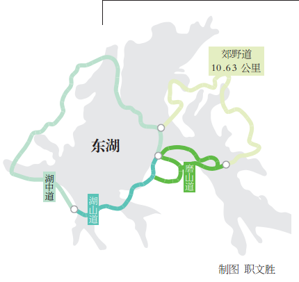 武汉 东湖绿道秀出 深闺 落雁美景图片