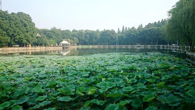 东湖风景区 图片来源:中华摄影网