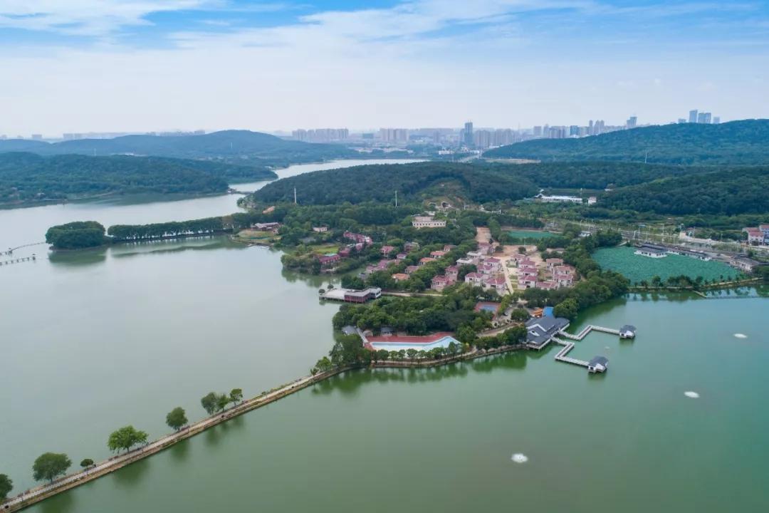 备战军运会 东湖将打造五条最美风景线 - 武汉文明网