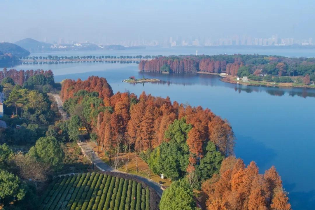 备战军运会 东湖将打造五条最美风景线